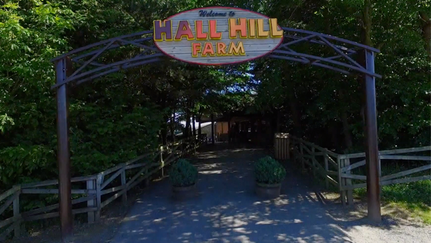 Farm for Children - Hall Hill Farm: Visit Hall Hill Farm and